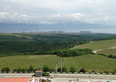 View from Chateau Pinot